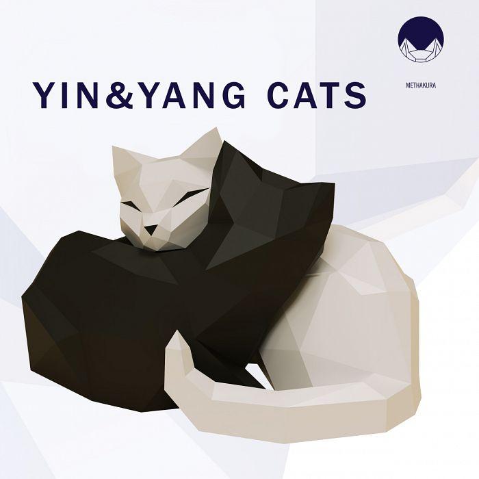 Yin & Yang Cats
